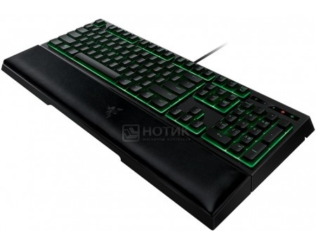 Клавиатура проводная Razer Ornata, USB, Черный RZ03-02042300-R3R1 от Нотик