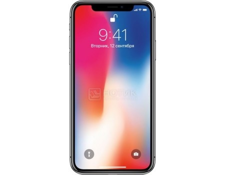 "Фотография товара смартфон Apple iPhone X 256Gb Space Gray (iOS 11/A11 Bionic 2400MHz/5.8"" 2436x1125/3072Mb/256Gb/4G LTE ) [MQAF2RU/A] (54248)"