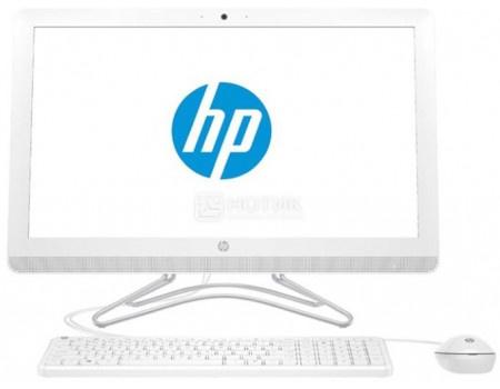 Моноблок HP 200 G3 (21.50 TN (LED)/ Pentium Quad Core J5005 1500MHz/ 4096Mb/ SSD / Intel UHD Graphics 605 64Mb) Free DOS [4YW19ES] фото